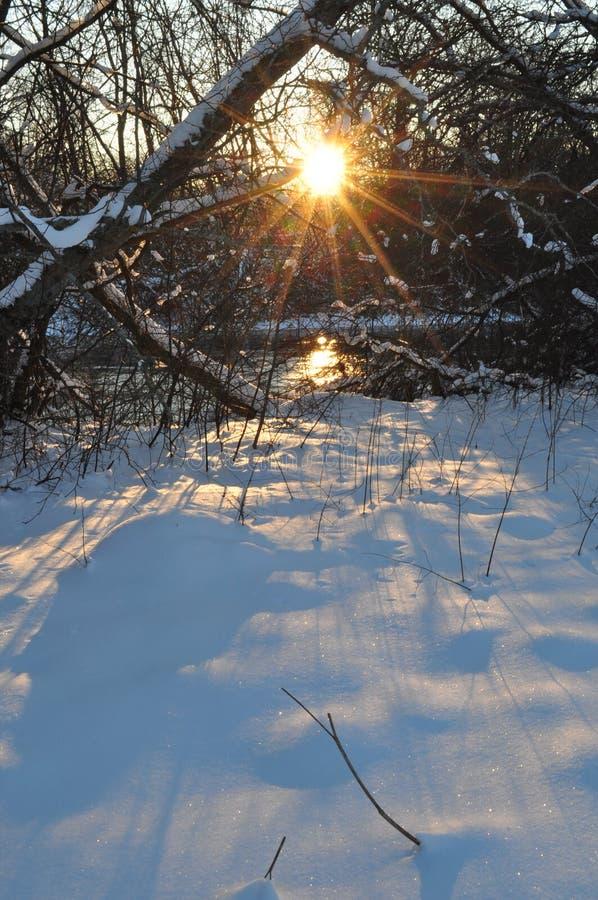 Noordelijke de winterzonsondergang stock afbeeldingen