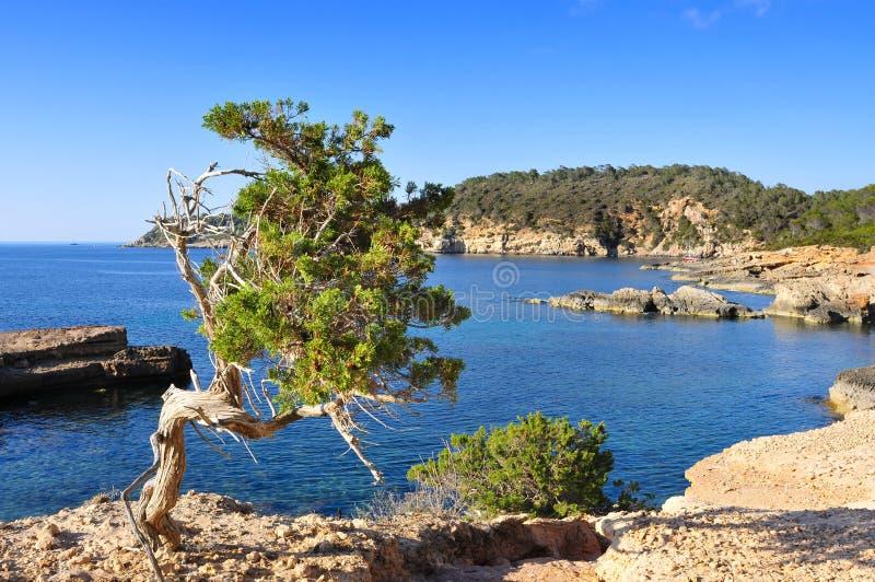 Noordelijke kust van Ibiza-Eiland, Spanje royalty-vrije stock foto