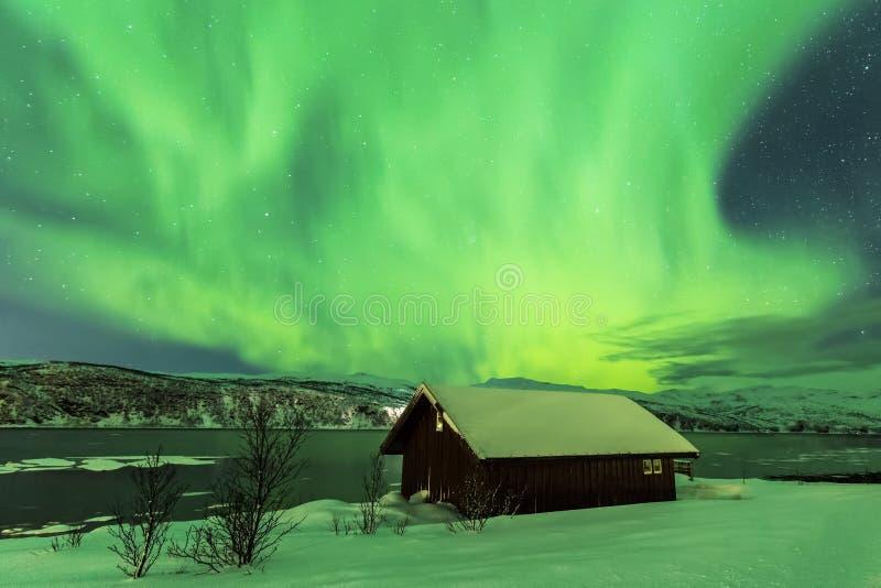 Noordelijke lichten Aurora Borealis in de nacht boven typisch a royalty-vrije stock afbeeldingen