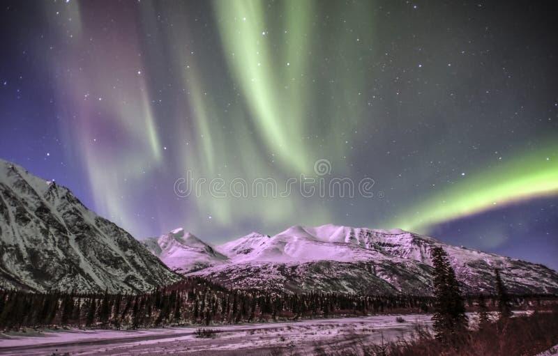 Noordelijke lichten in Denali Alaska royalty-vrije stock fotografie