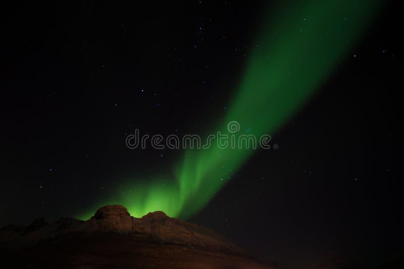 Noordelijke lichten die de zeven zusters, Noorwegen benadrukken stock afbeelding