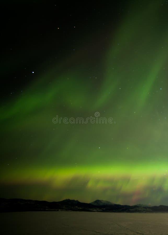 Noordelijke Lichten die over bevroren Meer Laberge Yukon Canada dansen royalty-vrije stock fotografie