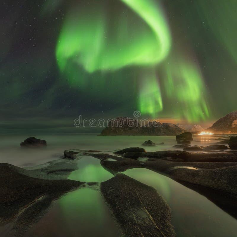 Noordelijke lichten in Lofoten-eilanden, Noorwegen Groen aurora borealis Sterrige hemel met polaire lichten Het landschap van de  stock fotografie