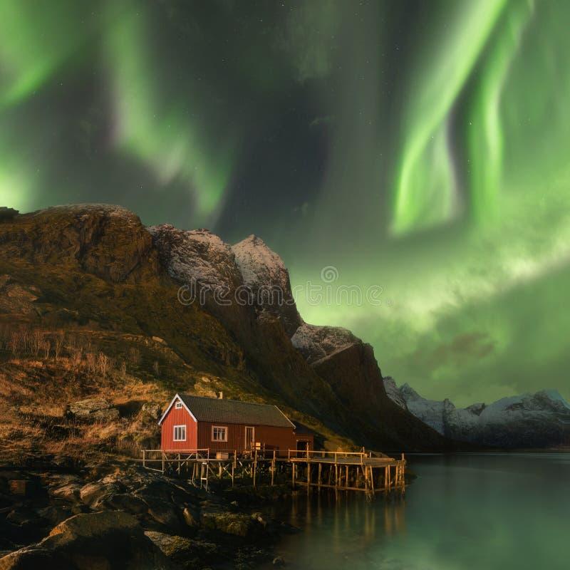 Noordelijke lichten in Lofoten-eilanden, Noorwegen Groen aurora borealis Sterrige hemel met polaire lichten Het landschap van de  royalty-vrije stock foto's