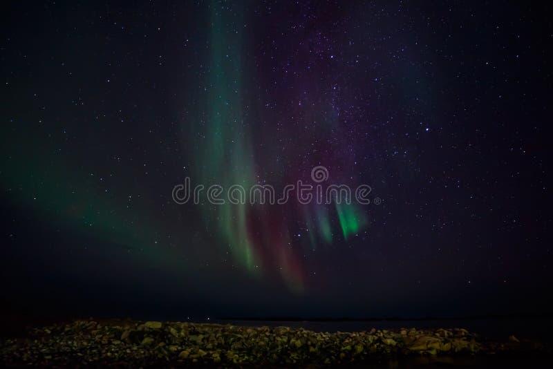 Noordelijke lichten op een kust royalty-vrije stock foto