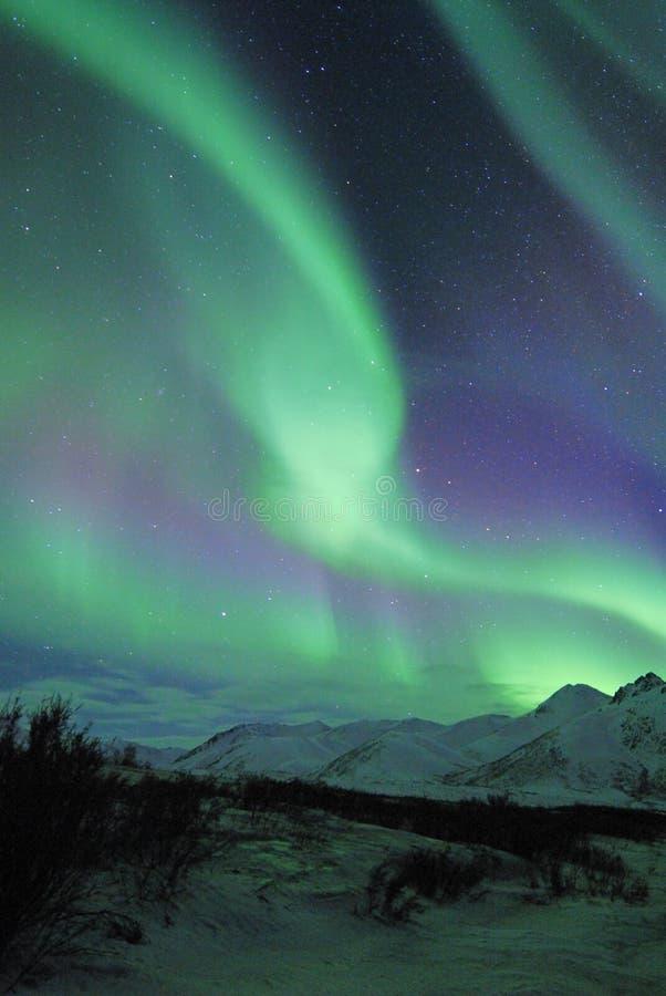 Noordelijke lichten over bergen stock afbeeldingen