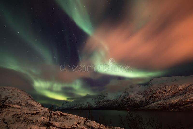Noordelijke lichten over Ersfjord, Noorwegen stock foto