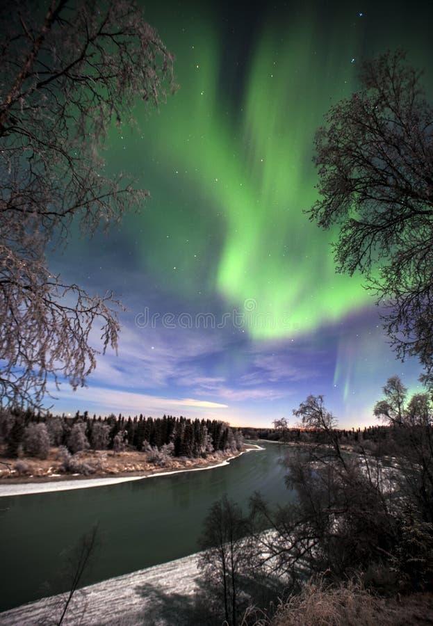 Noordelijke lichten over Soldotna Alaska en de Kenai-rivier stock fotografie