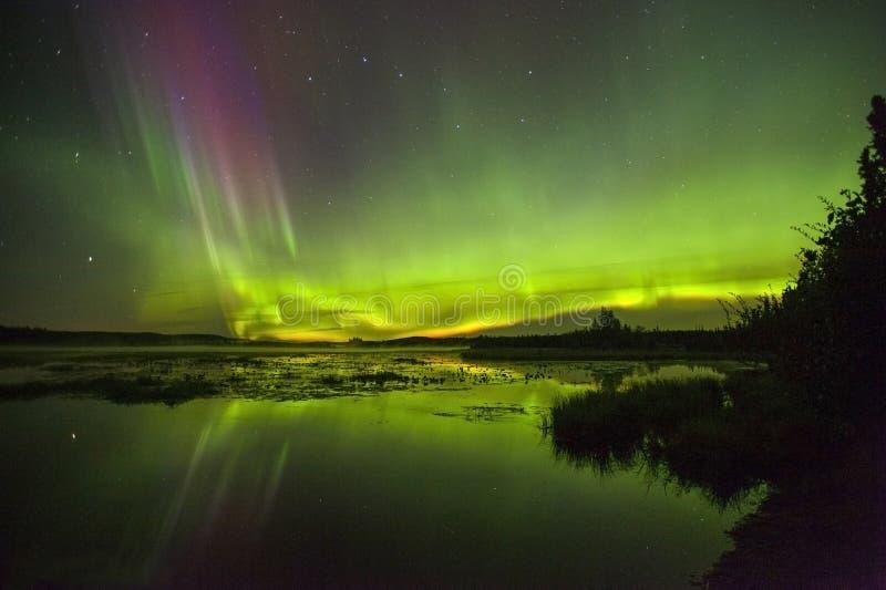 Noordelijke lichten over Watson Lake in Alaska royalty-vrije stock foto's