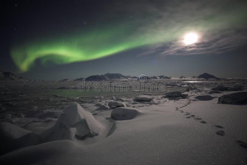 Noordelijke Lichten - Spitsbergen royalty-vrije stock afbeelding