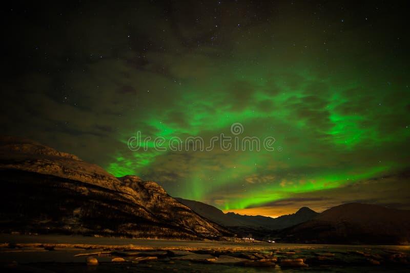 Noordelijke lichten in Troms stock afbeelding