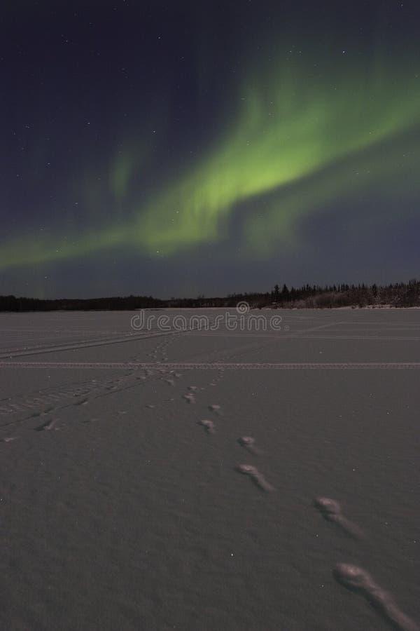 Noordelijke lichtenactiviteit over bevroren meer stock afbeeldingen