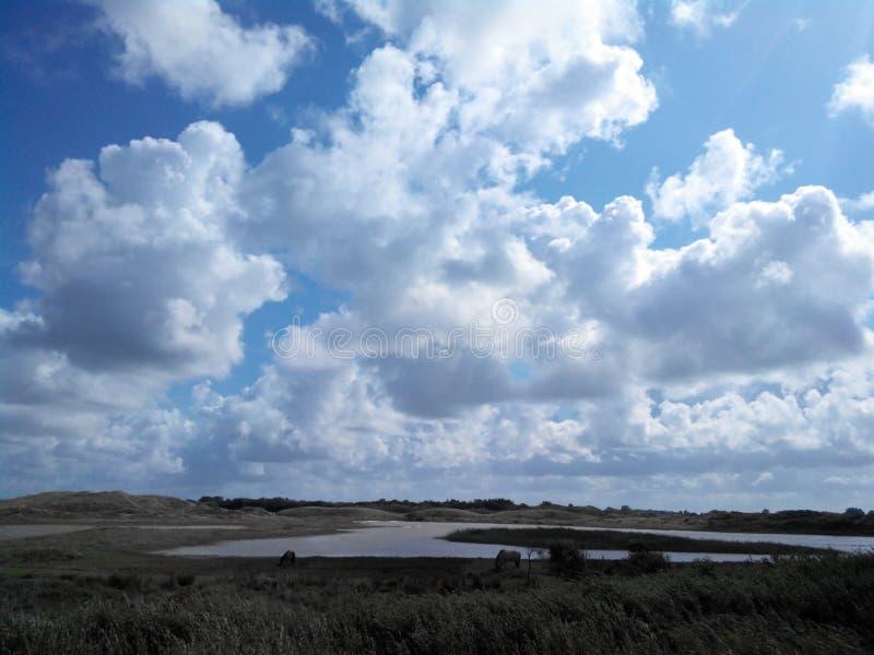 Noordelijke overzees, Nederland, Den Helder royalty-vrije stock fotografie