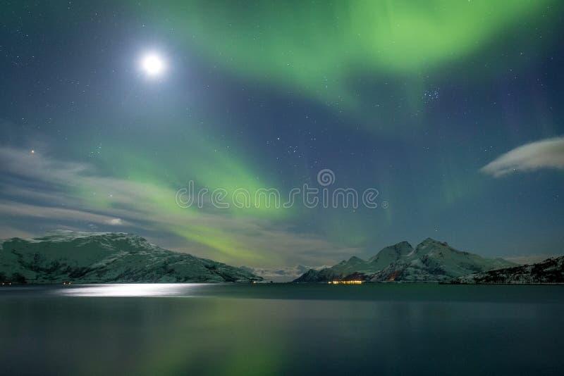 Noordelijke overzeese fjord in groene aurora borealislichten royalty-vrije stock afbeelding