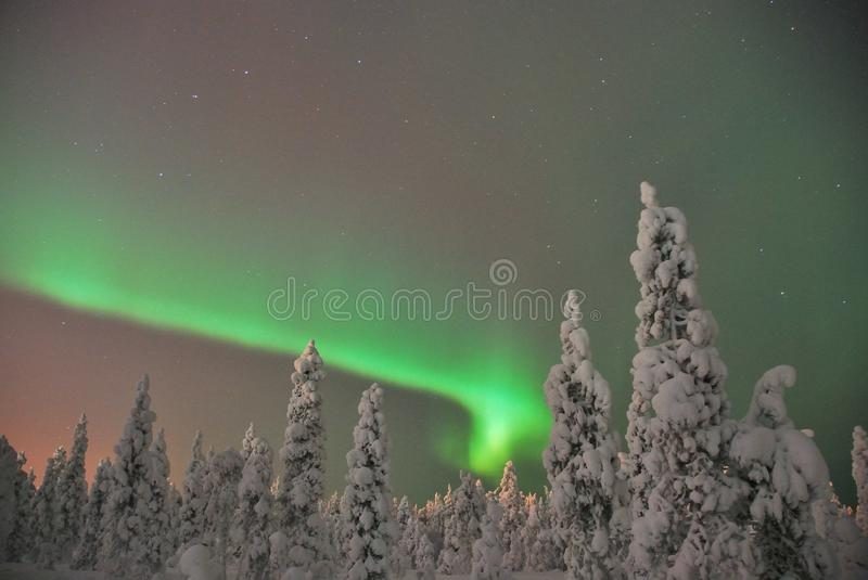 Noorderlicht (aurora borealis). An aurora is a natural light display in the sky (from the Latin word aurora, sunrise or the Roman goddess of dawn), especially in royalty free stock photos