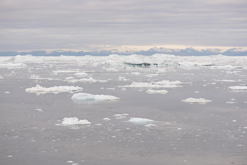 Noordpoollandschap in Groenland stock foto's