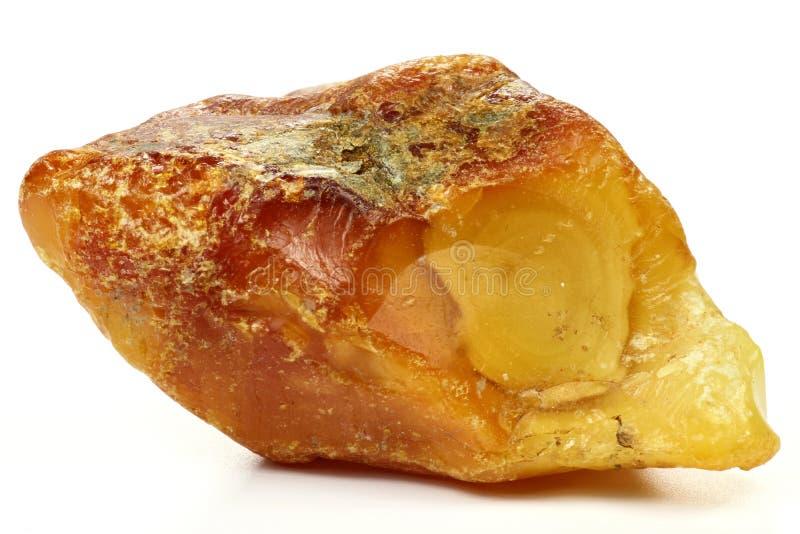 Noordzee amber stock foto's