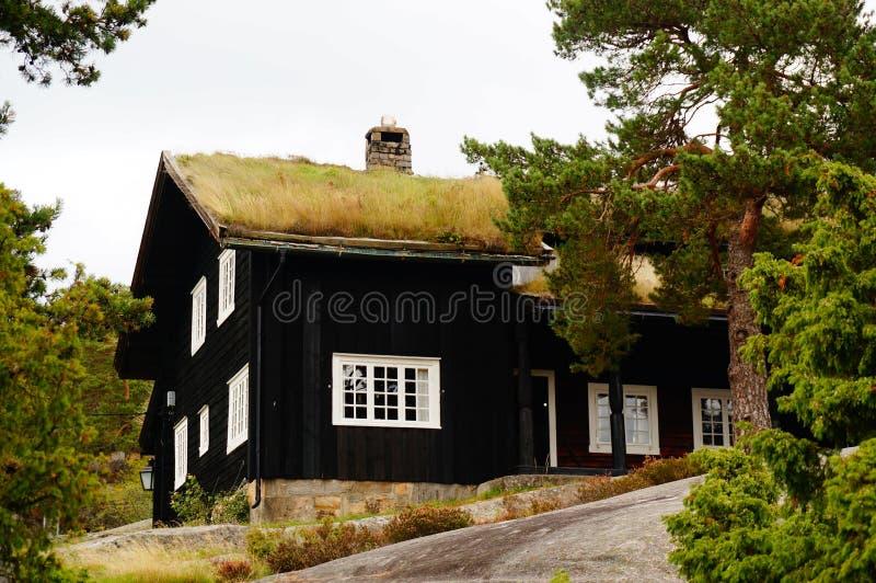 Noorse huizen, Noorwegen stock afbeelding