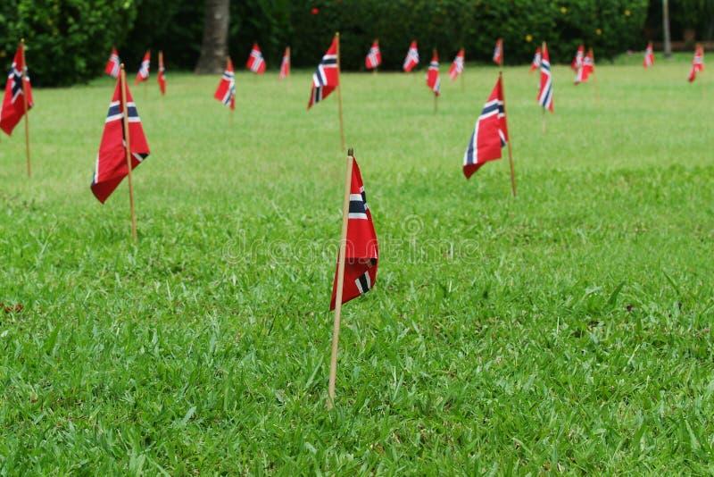 Noorse vlaggen in een tuin stock fotografie