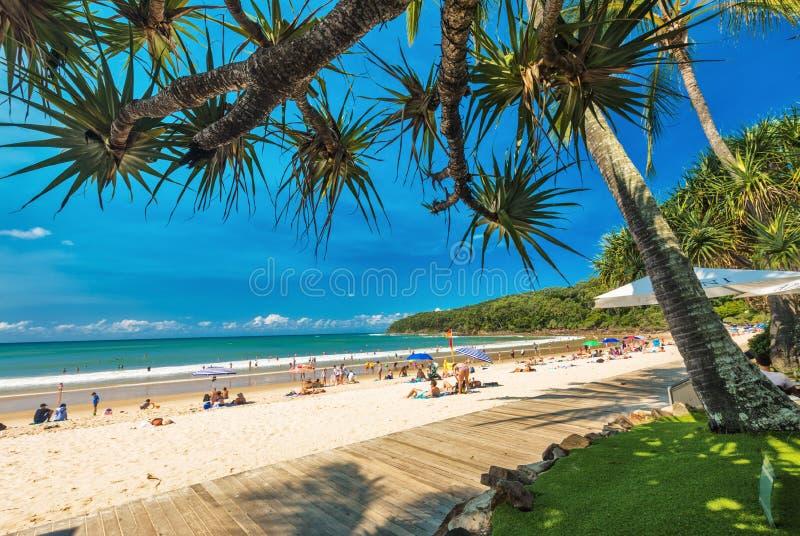 NOOSA, AUSTRALIA, FEB 17 2018: People enjoying summer at Noosa m. Ain beach - a famous tourist destination in Queensland, Australia royalty free stock images