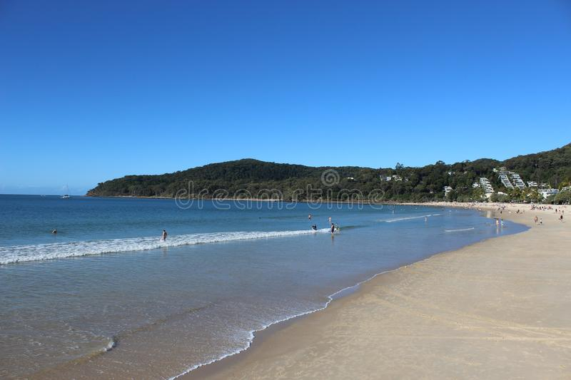 Noosa Beach Ocean stock photo. Image of surfing, paddle ...
