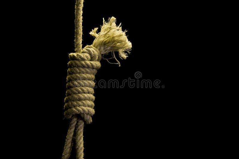 Noose stock image