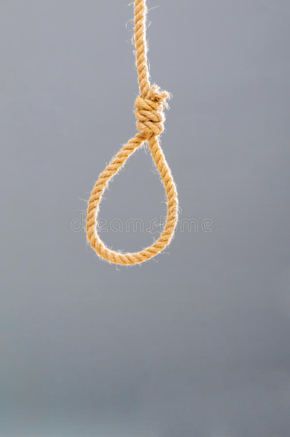 Download Noose made of rope stock image. Image of noose, crisis - 11805753