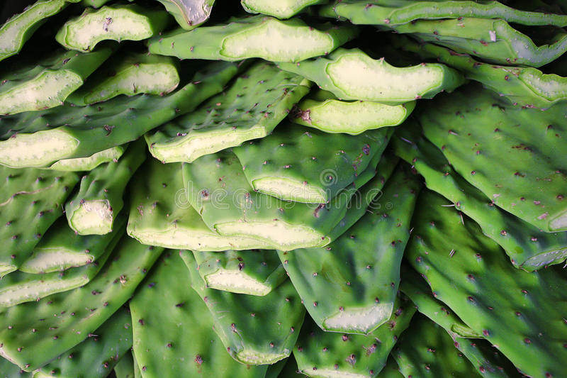 Nopales/Cactuspeddels in markt stock foto's