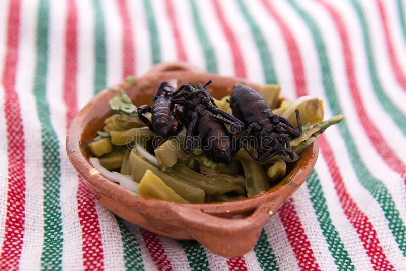 Nopales met kever, Mexicaans Voedsel royalty-vrije stock afbeelding
