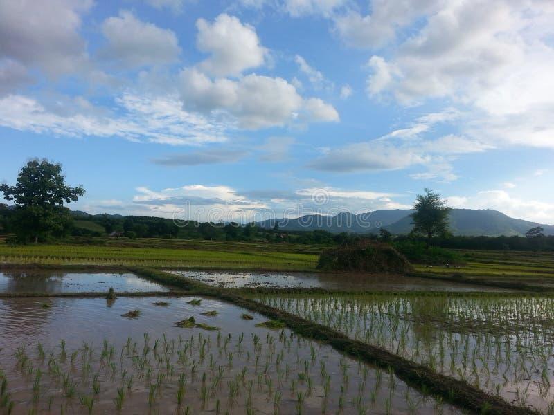 Nord av Thailand royaltyfri foto