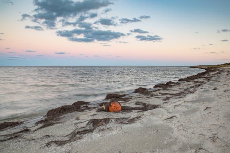 Nord Carolina esterna delle banche del foro canadese della spiaggia di Haulover fotografie stock libere da diritti