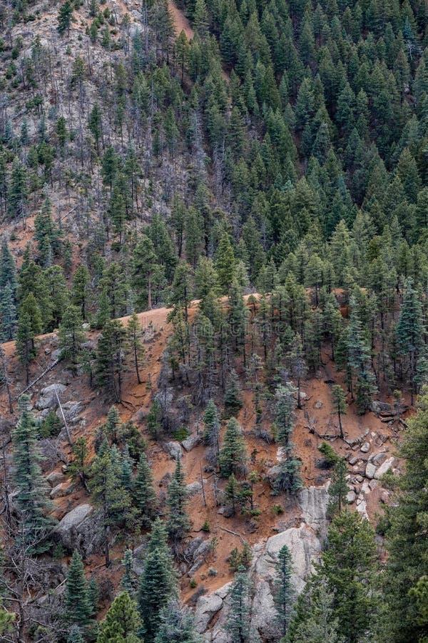 Nord-Cheyenne-Schluchtkanon Colorado Springs stockfoto