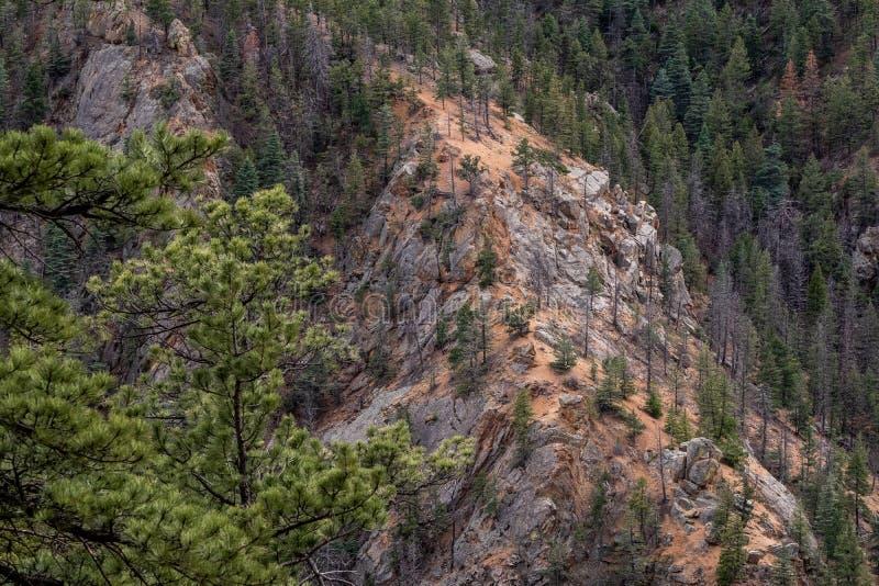 Nord-Cheyenne-Schluchtkanon Colorado Springs stockfotografie