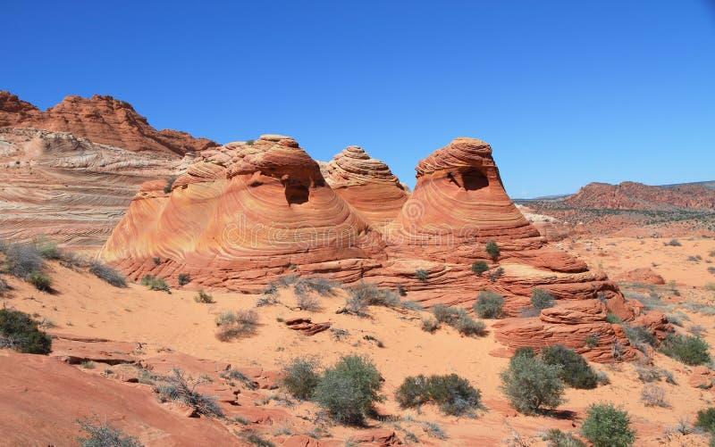 Nord des Etats-Unis, buttes de l'Arizona/coyote : Traînée à la vague - buttes bizarres photographie stock libre de droits