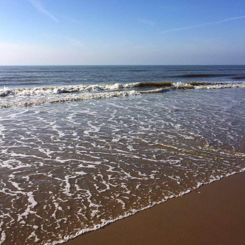 Nord havsvågor royaltyfri fotografi