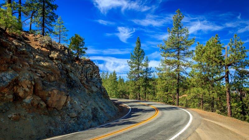 Nord-Kalifornien-Kurve stockfotos