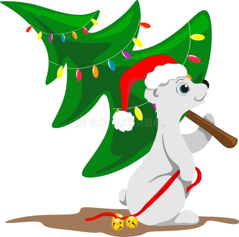 Nordbär in einem Weihnachtshut mit Glocken auf einem roten Band in seiner Tatze trägt einen gekleideten Weihnachtsbaum stock abbildung