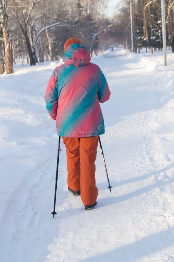 Norden går, sikten bakifrån av en vuxen kvinnlig och att campa i träna eller den parkerar, aktiva och sunda livsstilen fotografering för bildbyråer