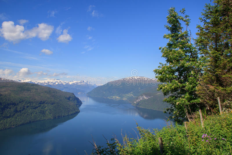 Nordfjord in summer royalty free stock images