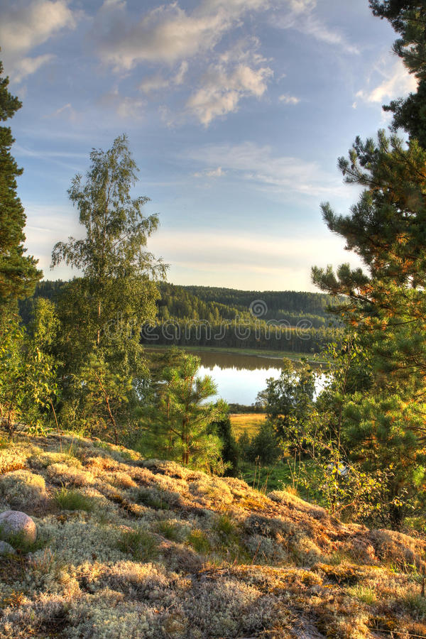 Nordic autumn stock photo