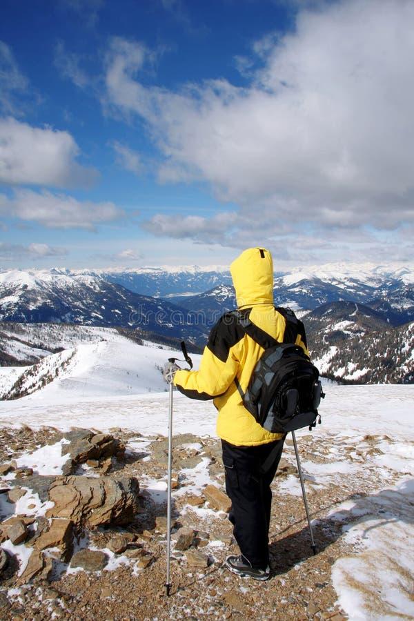 Nordic che cammina all'inverno fotografia stock