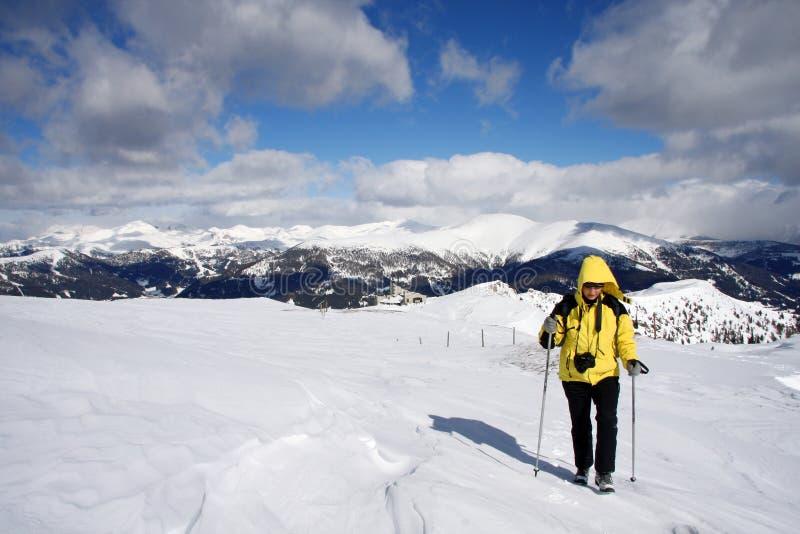 Nordic che cammina nel paesaggio di inverno fotografia stock