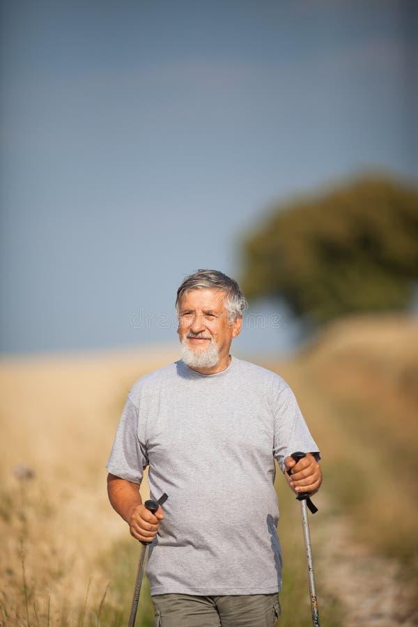 Nordic hermoso activo del hombre mayor que camina al aire libre fotografía de archivo