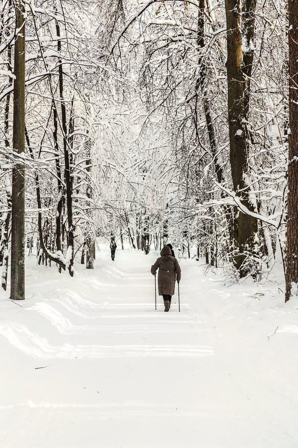 Nordic que camina en el parque de Moscú fotografía de archivo libre de regalías