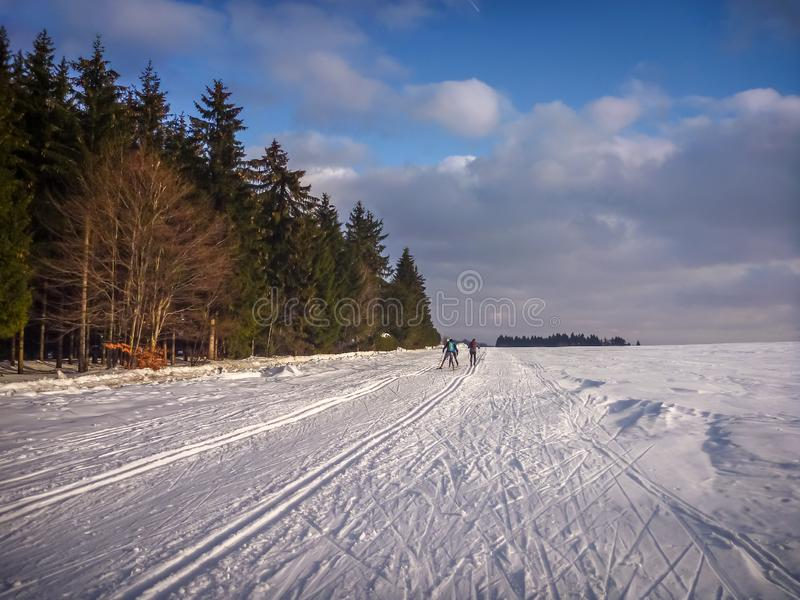 Nordic skiing trails on the edge of coniferous forest near Nove Mesto na Morave. Czech-Moravian highlands, Czech Republic royalty free stock images