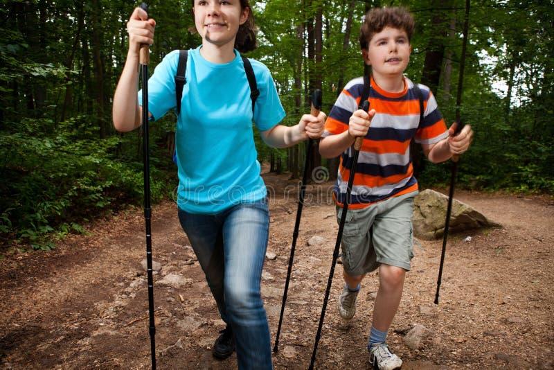 Download Nordic walkers stock image. Image of slim, activity, nordic - 20880983
