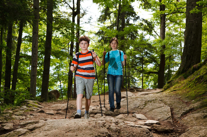 Download Nordic walkers stock image. Image of outdoors, horizontal - 20880999