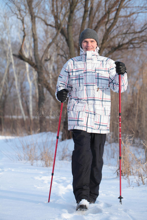 Download Nordic walking stock photo. Image of trees, pole, fitness - 26587360