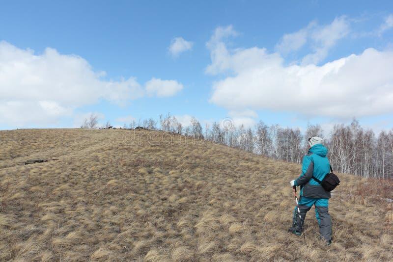 Nordic Walking - adult woman climbing on a mountain. Bald, Bugotaksky hills, Novosibirsk region, Russia stock photos