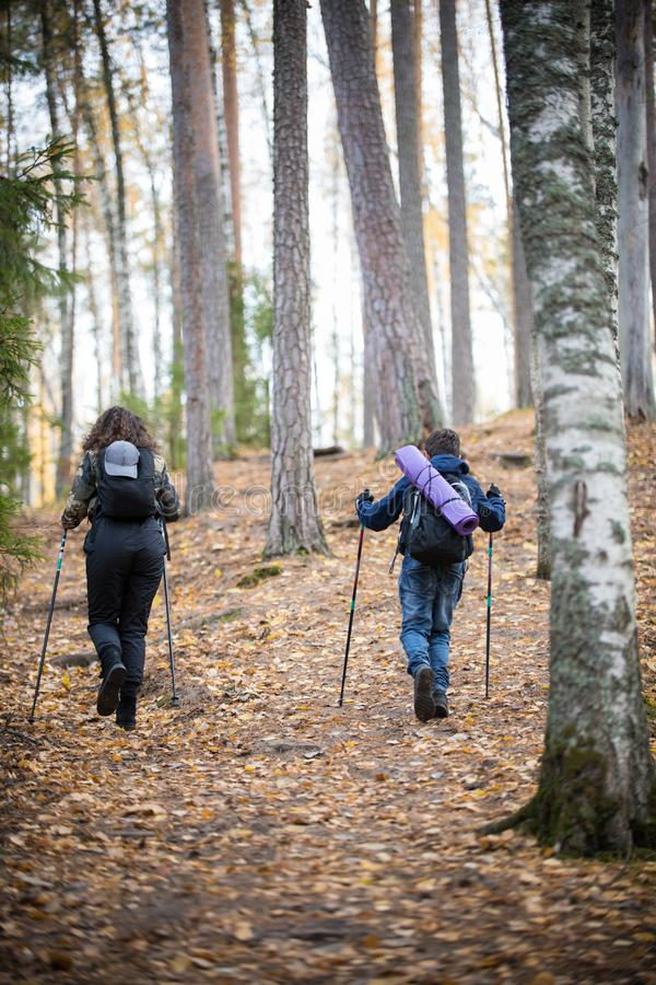 Nordic walking. Child boy and young woman in the forest. Back view. Autumn. Nordic walking. Child boy and young woman in the forest. Back view. Fall season royalty free stock photo